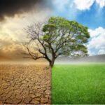 Cattolici e Politica. Non più seme sparso in terreni aridi – di Eleonora Mosti