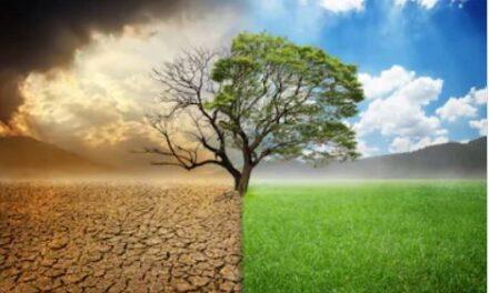 Dall'Europa un mare di soldi per l'economia verde. Sapremo intercettarli?