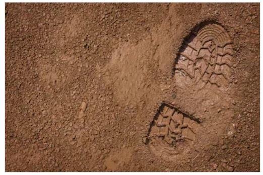 Con i piedi ben piantati nel passato – di Nicola Graziani