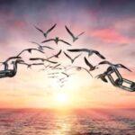 """Il principio di """"autonomia"""": punto di partenza per una politica riconoscibile – di Lorenzo Dellai"""