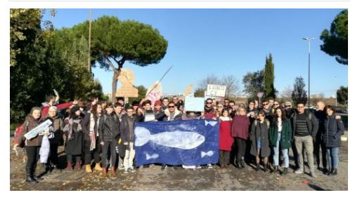 Sardine: da Treviso a Roma ispirandosi anche a Politica Insieme