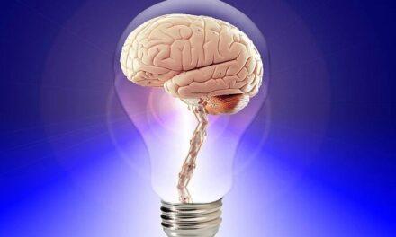 Manuale di sopravvivenza cerebrale – di Luigi Milanesi